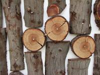 I legni della chitarra (parte 2)